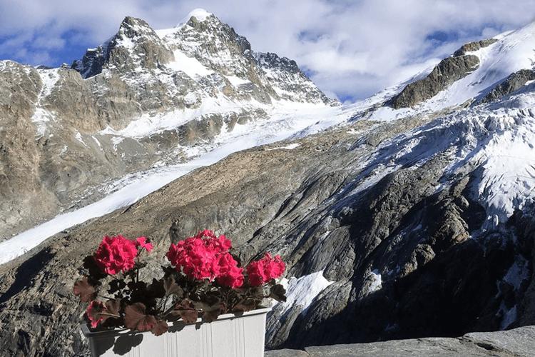 Il gruppo del Bernina visto dalla Chamanna Coaz